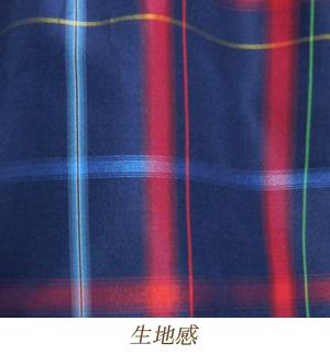 tsu195-05.jpg