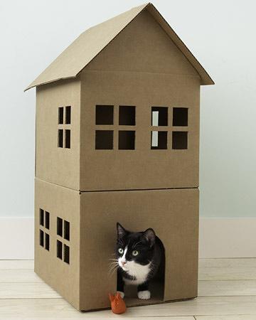 pc_wgd104781_cathouse3a_xl.jpg
