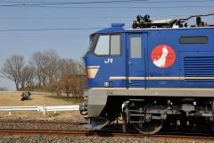 EF510-500_284