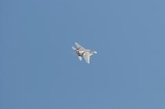 Hyakuri AB_F-15J_459