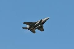 Hyakuri AB_F-15J_463