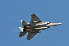 Hyakuri AB_F-15J_464