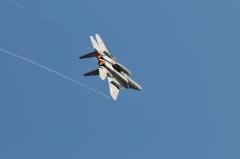 Hyakuri AB_F-15J_466