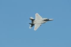 Hyakuri AB_F-15J_469