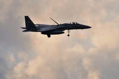 Hyakuri AB_F-15J_476