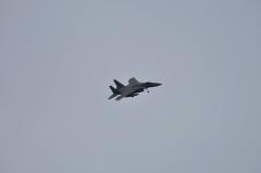 Hyakuri AB_F-15J_482