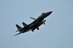 Hyakuri AB_F-15J_485
