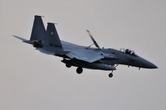 Hyakuri AB_F-15J_486