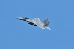 Hyakuri AB_F-15J_489