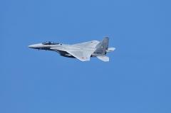 Hyakuri AB_F-15J_490
