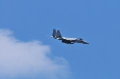 Hyakuri AB_F-15J_493