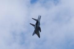Hyakuri AB_F-15DJ_81