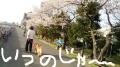 2016年4月お花見~♪①