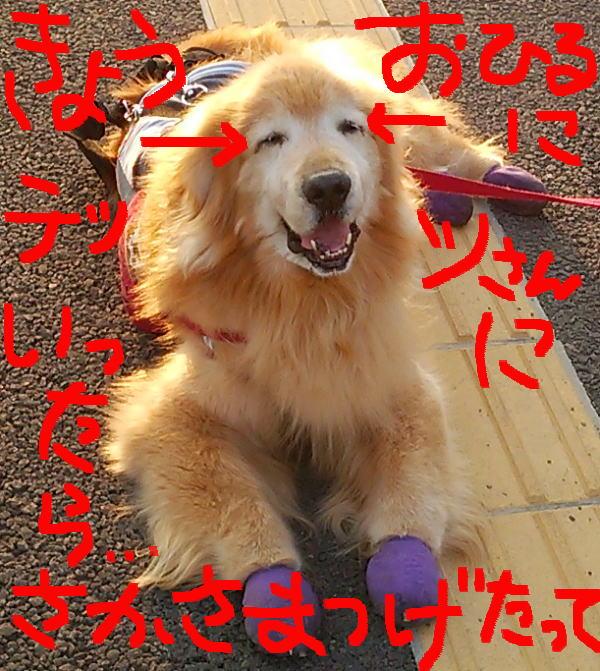 2016年5月松原地蔵尊前にて①