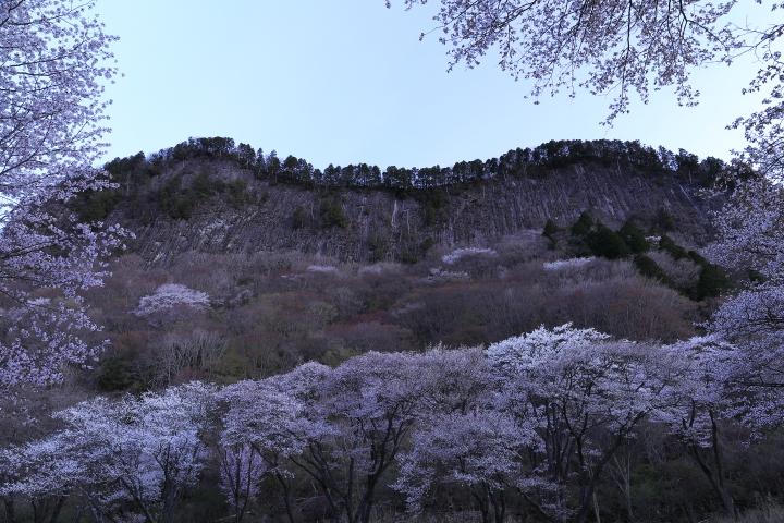 2016_0416_4.jpg