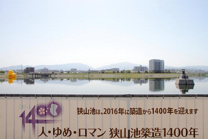 2016.04.26・『 ラバー・ダック(狭山池) 』 大阪府 03