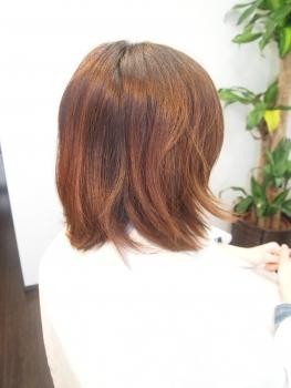 P4302733.jpg