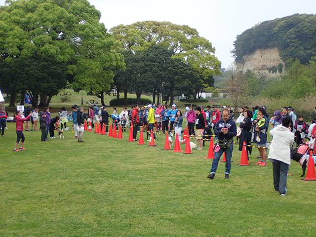 ワンちゃんペアマラソン (4)