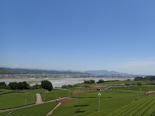 藤枝朝ラーメン (16)