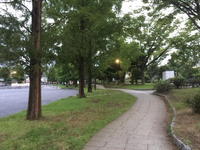 セミ公園 (9)