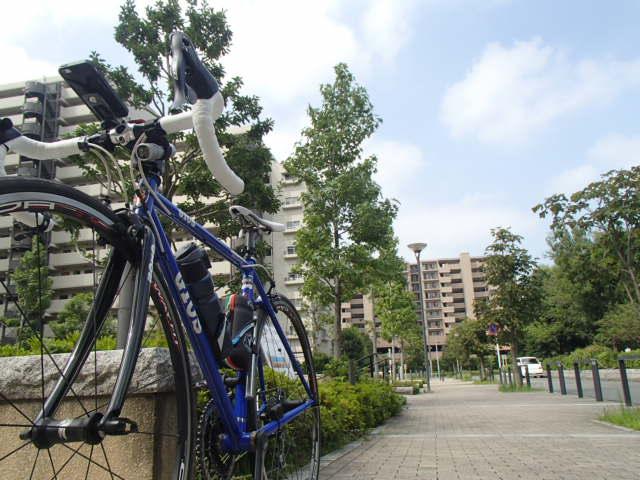 北風サイクリング (16)