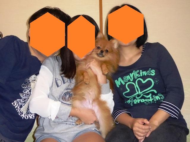 20151024ポンころ家族写真①