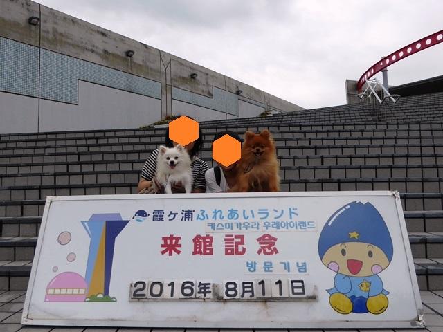 20160811ポンころドライブ①