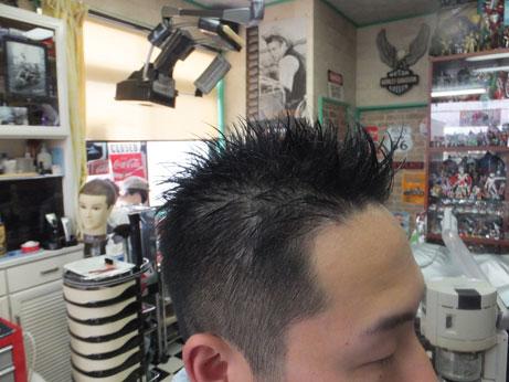 hair015.jpg