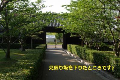 IMGP9310_convert_20160830111053.jpg