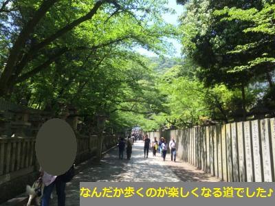 IMG_9247_convert_20160806102152.jpg