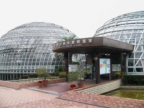 東谷山の温室