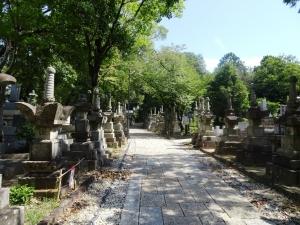 整備された墓道