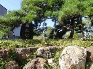 鎧掛松の碑