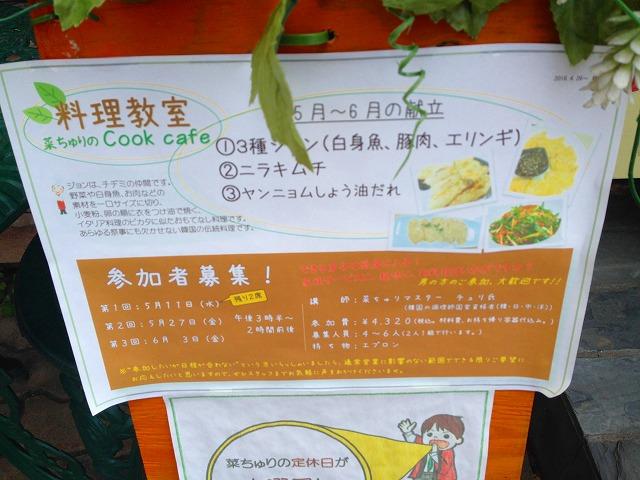 菜ちゅり (3)