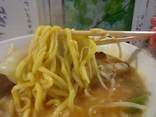 亀壱2 (7)