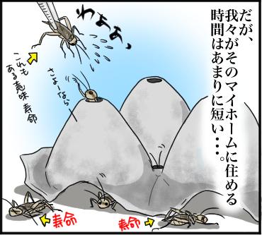 コオロギの穴リベンジ4