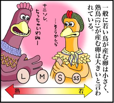 卵の話し2
