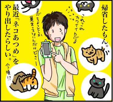 ネコあつめ1