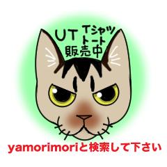 UTバナー3