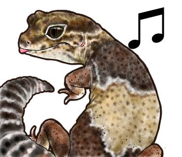 爬虫類24