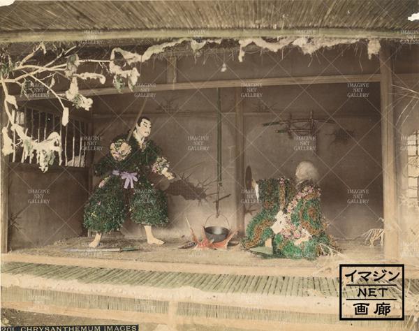01-8007-071(IB106)写真菊人形団子坂東京兼用
