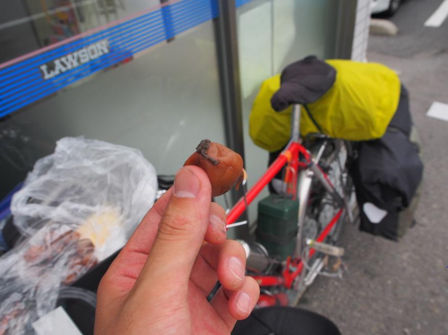 20160707 自転車梅干し