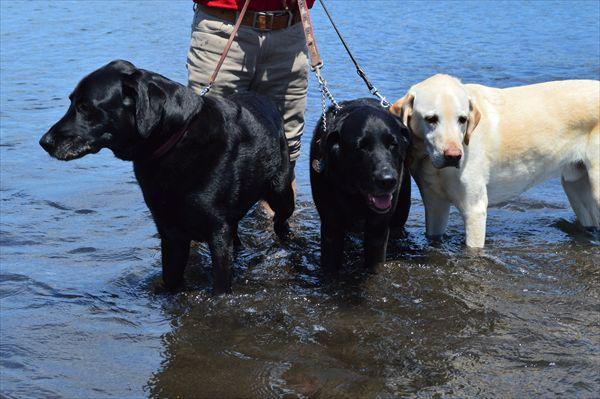 3兄弟inオレンジビーチ