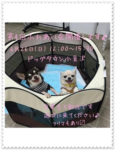 mini16第4回ふれあい会-20160526-400