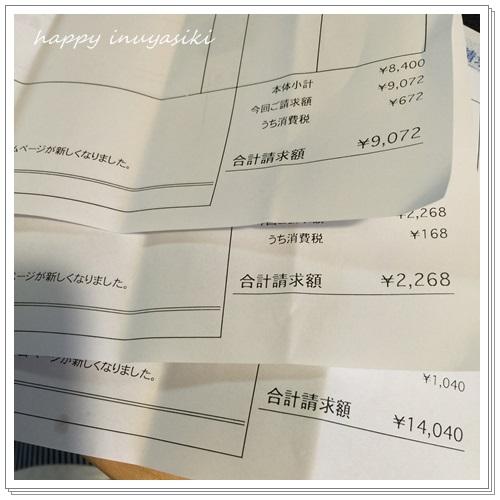 mini16IMG_0429-20160713.jpg
