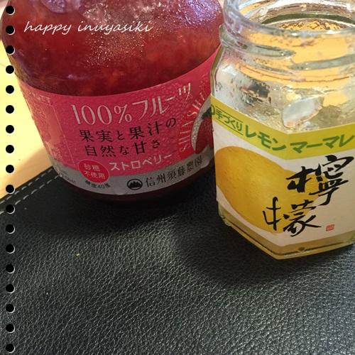 mini16IMG_4484-20160828.jpg