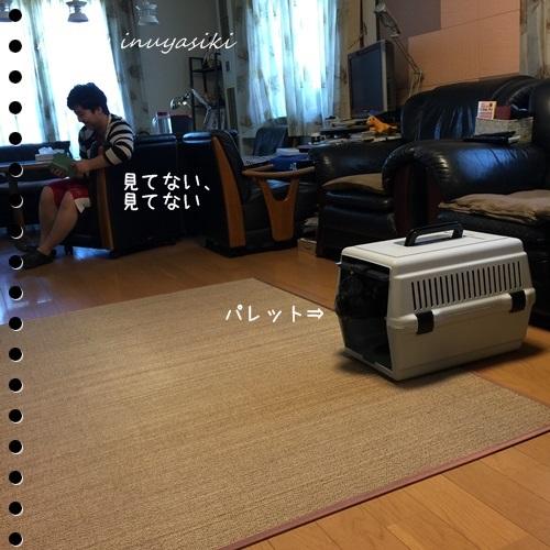mini16IMG_4934-20160904.jpg