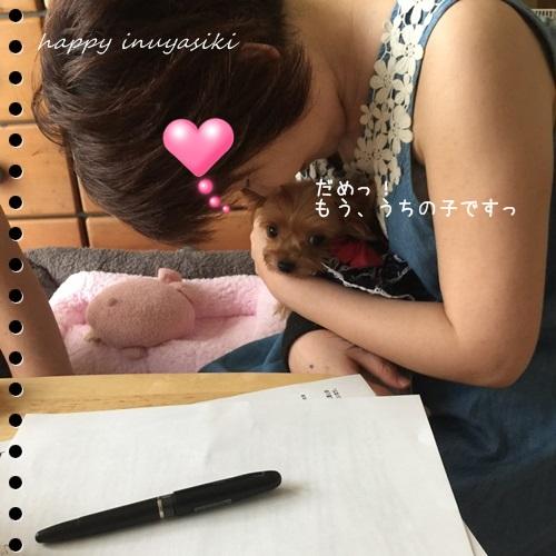 mini16IMG_5203-20160905.jpg