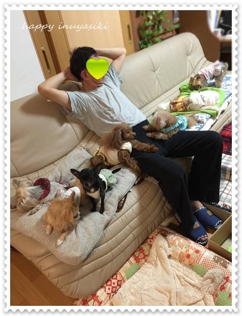 mini16IMG_5361-20160504.jpg