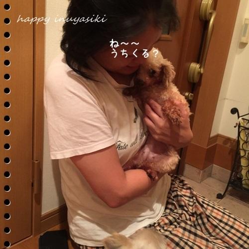 mini16IMG_5680-20160913.jpg